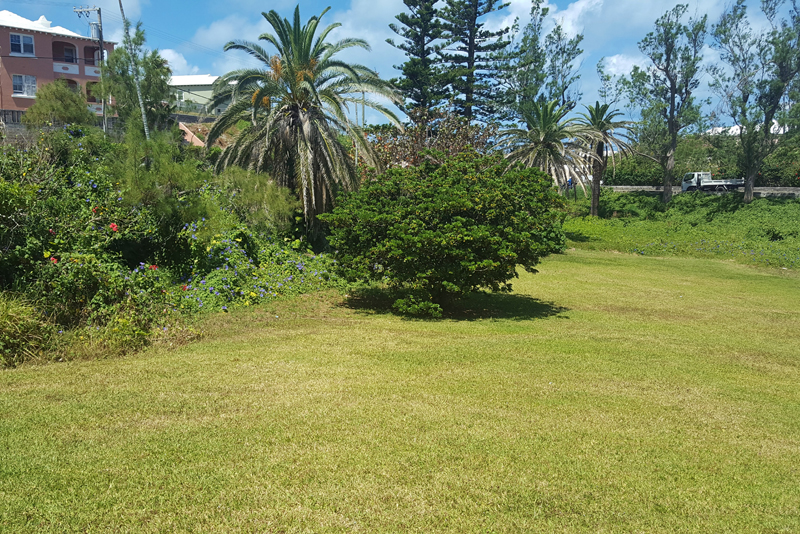 Additional photo for property listing at 3 Sleepy Hollow Drive    Hamilton Parish, CR02 Bermuda