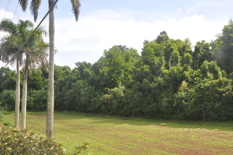 Additional photo for property listing at Inglewood Lot 4 4 Inglewood Lane   Paget Parish, PG06 Bermuda