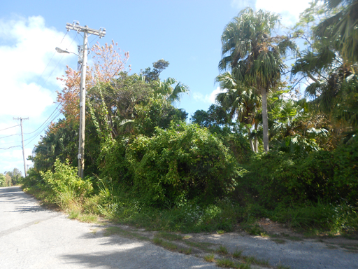Terreno por un Venta en Tanglewood Estate Lot 4 Tanglewood Road Paget Parish, PG03 Bermuda