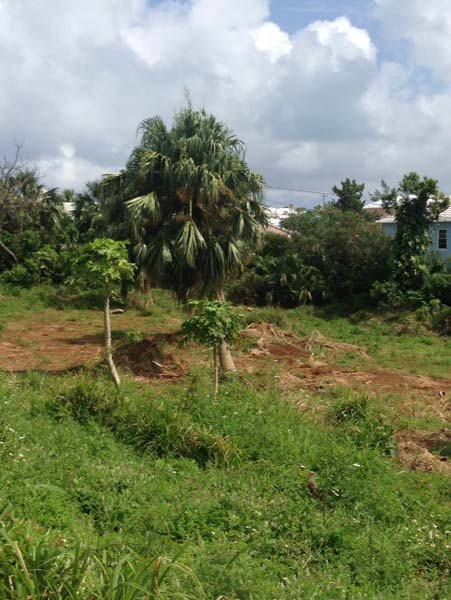 Terreno por un Venta en Emilys Bay Lane Lot 1 & 2 Emily's Bay Lane St Davids St Georges Parish, DD 01 Bermuda