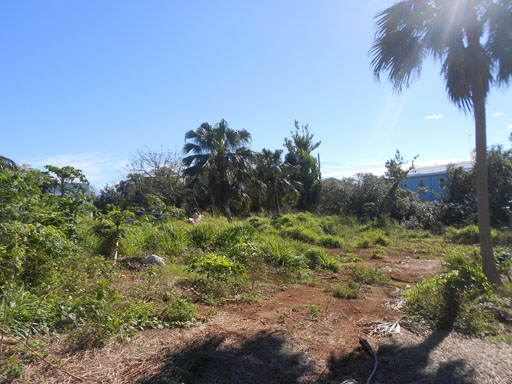 Additional photo for property listing at Emilys Bay Lane Lots 1 & 2 Emily's Bay Lane   St Georges Parish, DD 01 Bermuda