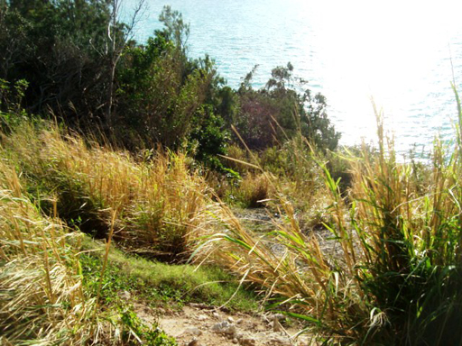 Additional photo for property listing at Rockywold Lot B Rockywold Drive   Sandys Parish, SB03 Bermuda