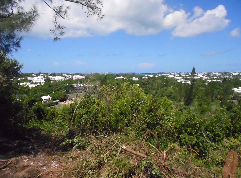 Additional photo for property listing at Woodland Grove Warwick Parish, Bermuda