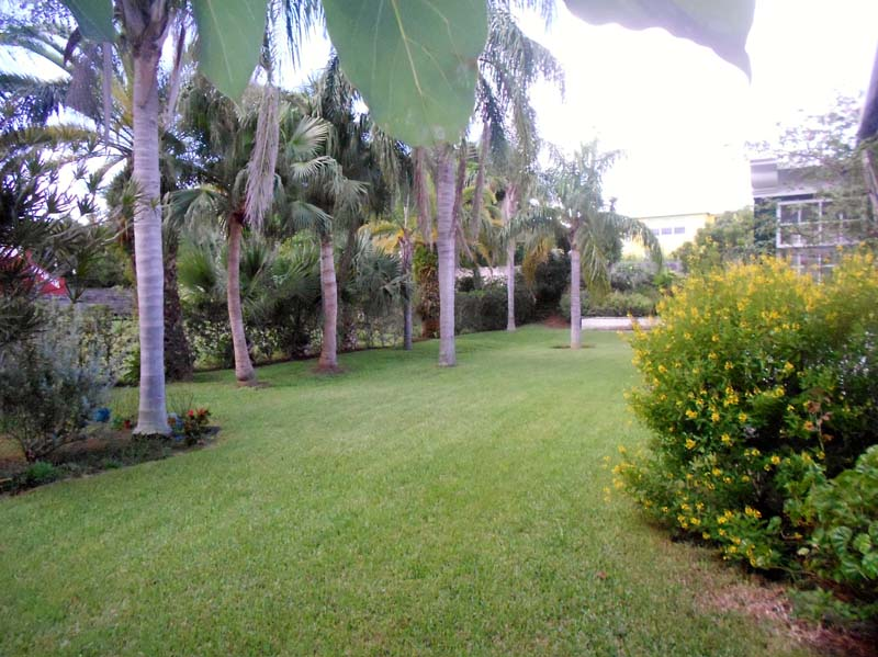 Additional photo for property listing at Tristan 12 Tamarind Vale   Warwick Parish, WK05 Bermuda